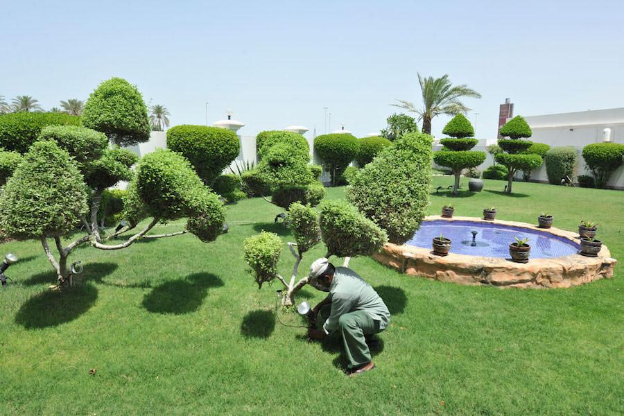 Almoayyed Garden Centre